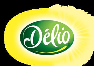 delio-logo-home